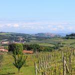 Colline di San Gimignano – San Gimignano Hills